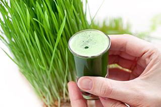 5 + 1 tipp a Búzafű italpor elkészítéséhez + a fogyasztáshoz